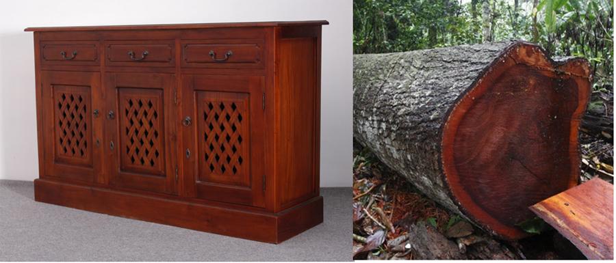 mahogany wood timber